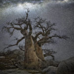 Purchase photographs by Beth Moon