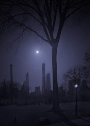 Drop the Sun - Central Park