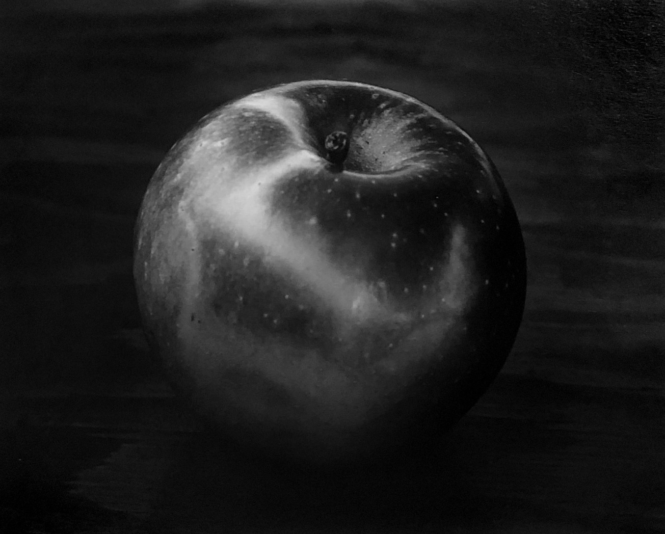 paul caponigro's image of an apple, winthrop, massachessettes.