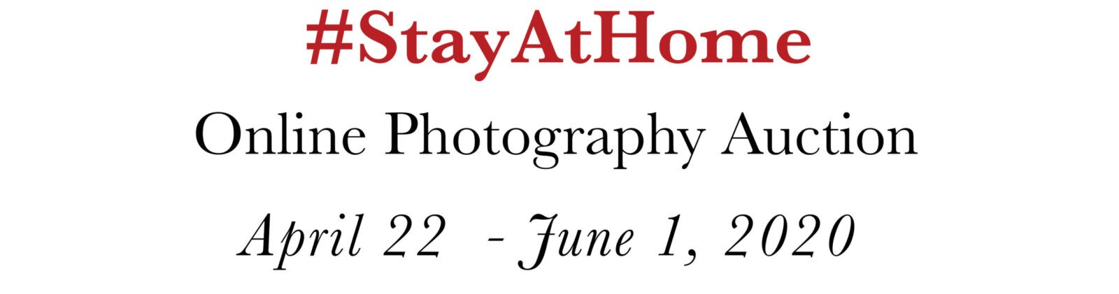 stay at home onine photography auction
